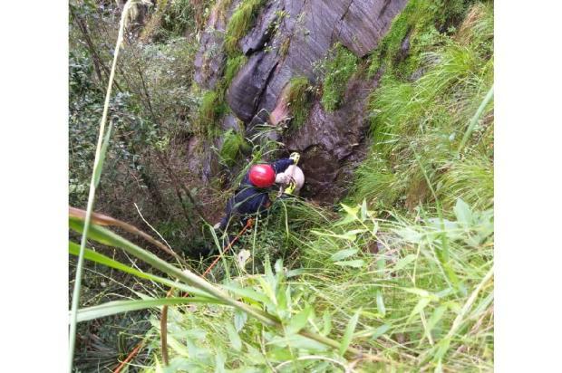 O local é de difícil acesso. Foto: Divulgação/Corpo de Bombeiros