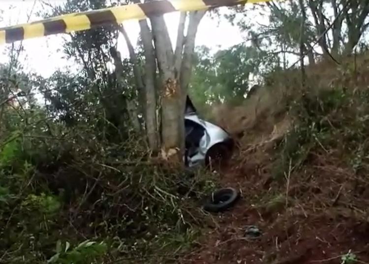 Carro saiu da pista e bateu contra uma árvore às margens da RSC-377. Foto: Divulgação/Polícia Civil