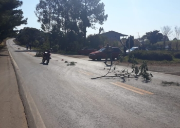 Vítima era mãe do motociclista de conduzia a moto.Foto: Divulgação/Polícia Rodoviária Estadual