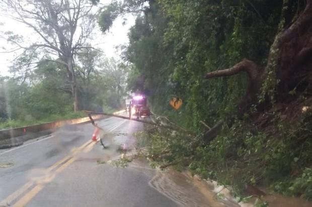 Fato aconteceu no quilômetro 179, entre Nova Petrópolis e Caxias do Sul. Foto: Divulgação/PRF