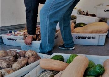 Assentados de Santana do Livramento e Coperforte arrecadam alimentos para doação. Foto: MST-RS/Divulgação