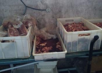 Local funcionava em péssimas condições de higiene. Foto: Foto: Franciele Menna Barreto/Divulgação