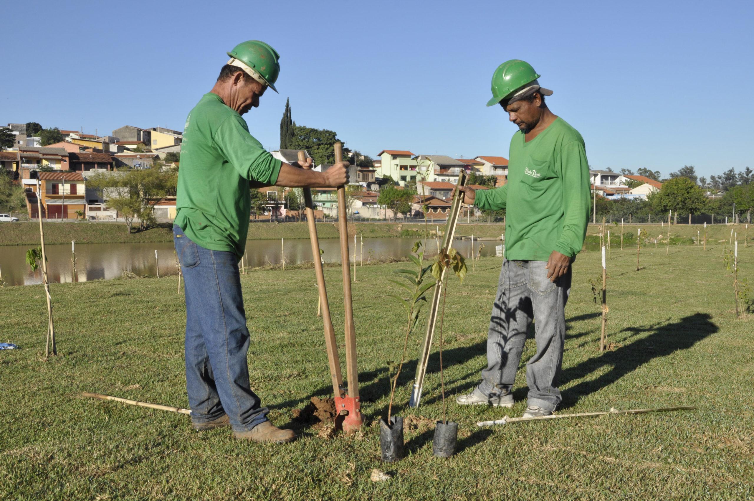 MRV, dois homens com ferramentas para plantio.