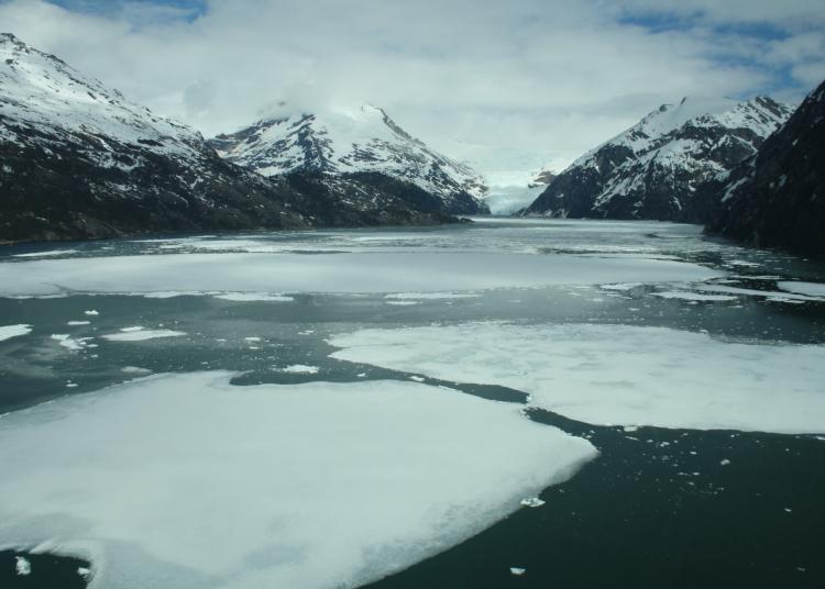 Gelo marinho é o gelo que se forma pelo congelamento da superfície do mar em baixas temperaturas e que derrete facilmente no calor. Foto: Divulgação/Cequa
