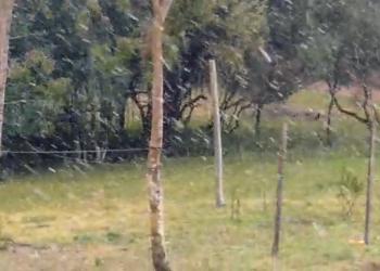 Neve em Canguçu. Foto: Jornal Tradição
